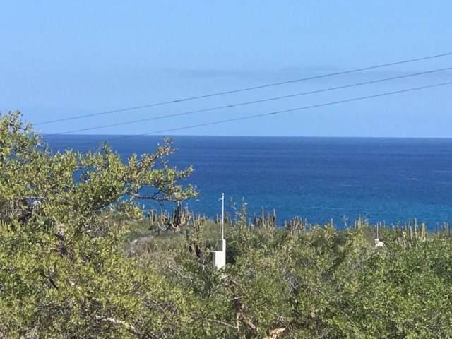 Carret. Los Barriles-El Cardon, East Cape, BS  (MLS #19-1386) :: Los Cabos Agent
