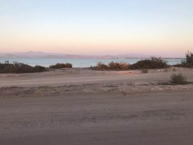 Paseo Costero Playa Centenario Lote 8, La Paz, BS  (MLS #19-1594) :: Ronival