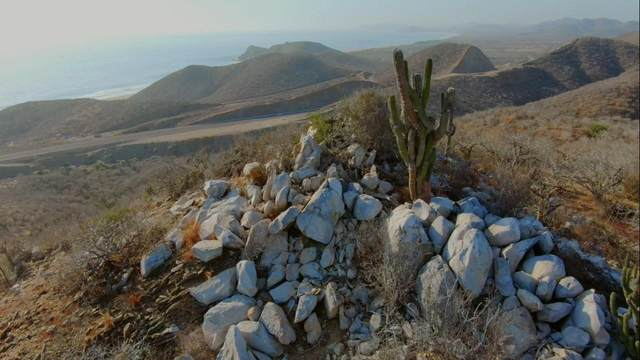 Km76 Carr.Transp. Cabo Sl- Todos S., Pacific, BS  (MLS #19-237) :: Own In Cabo Real Estate