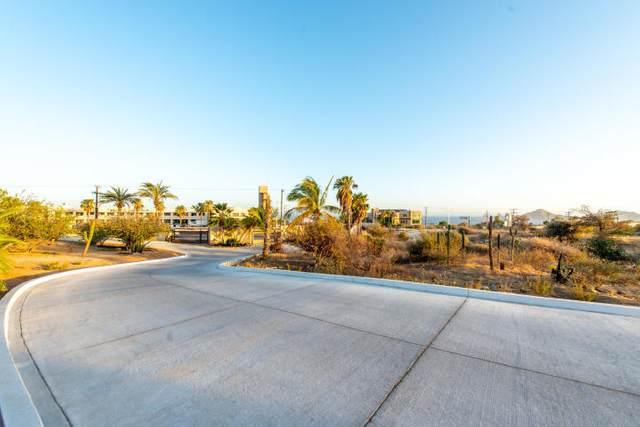 Novo Tamar Cactus #401, Cabo Corridor, BS  (MLS #19-2376) :: Coldwell Banker Riveras