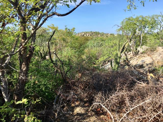 Mza S, Lot #3, East Cape, BS  (MLS #19-2479) :: Los Cabos Agent