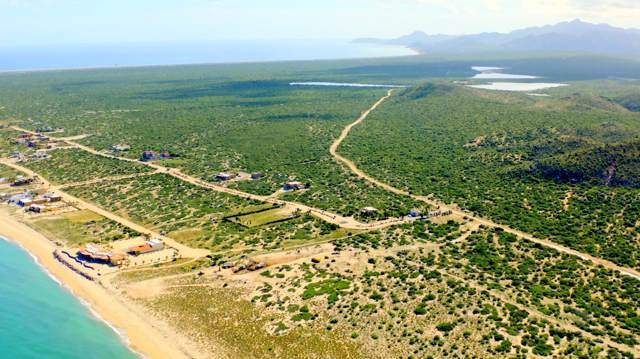 Camino Cabo Del Este, East Cape, BS  (MLS #19-2522) :: Los Cabos Agent