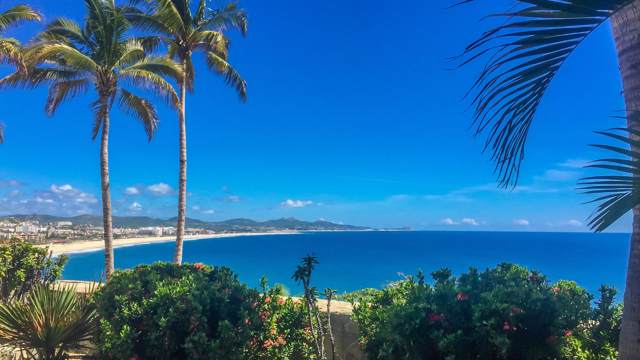 Gringo Hill, San Jose del Cabo, BS  (MLS #19-2684) :: Own In Cabo Real Estate