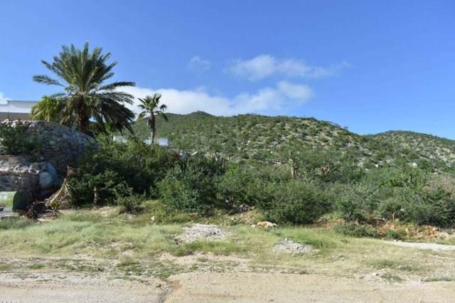 Camino Al Cardonal 2, East Cape, BS  (MLS #19-2694) :: Los Cabos Agent