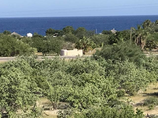 Calle Fenix, East Cape, BS  (MLS #19-2802) :: Los Cabos Agent