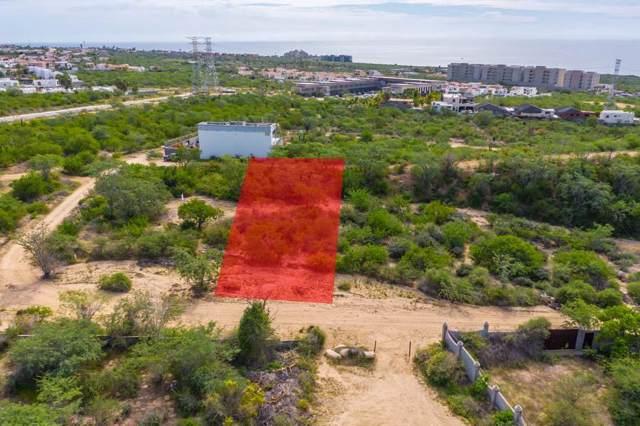 Desarrollo Campestre  El Tezal, Cabo Corridor, BS  (MLS #19-2880) :: Los Cabos Agent