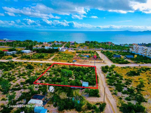 Calle Isla Gaudalupe, La Paz, BS  (MLS #19-3025) :: Los Cabos Agent