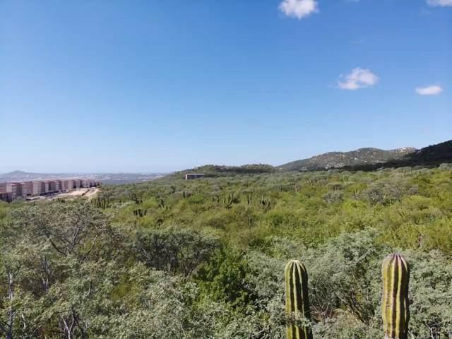 #228Z6 Ejido De Cabo San Lucas Parce P1/3, Cabo Corridor, BS  (MLS #19-3221) :: Los Cabos Agent