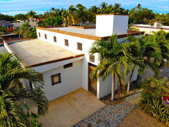 Calle Rangel, Pacific, BS  (MLS #19-3474) :: Own In Cabo Real Estate