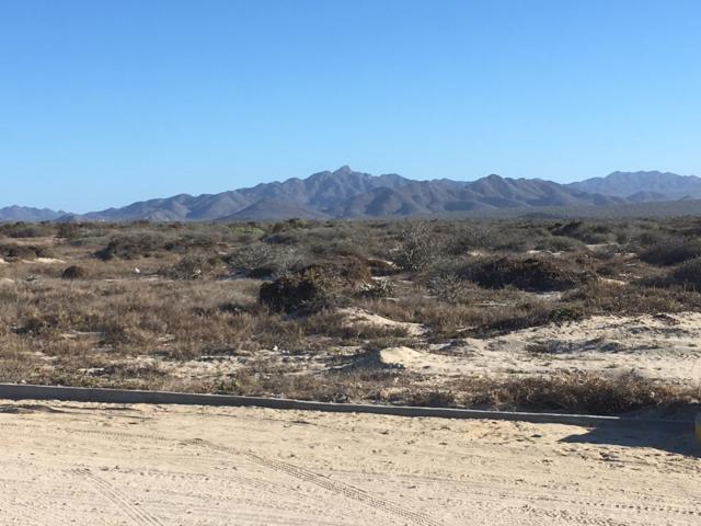 Playa Tortuga, East Cape, BS  (MLS #19-572) :: Los Cabos Agent