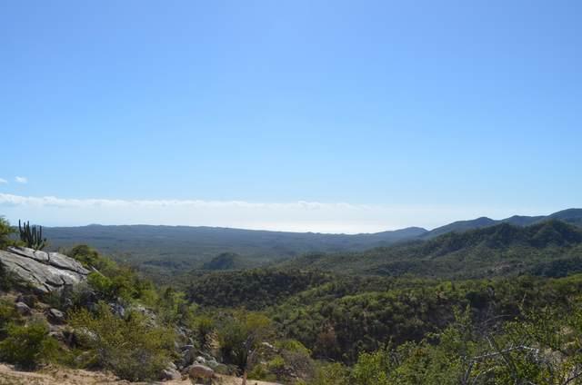 Camino A San Felipe, San Jose del Cabo, BS  (MLS #20-1108) :: Ronival