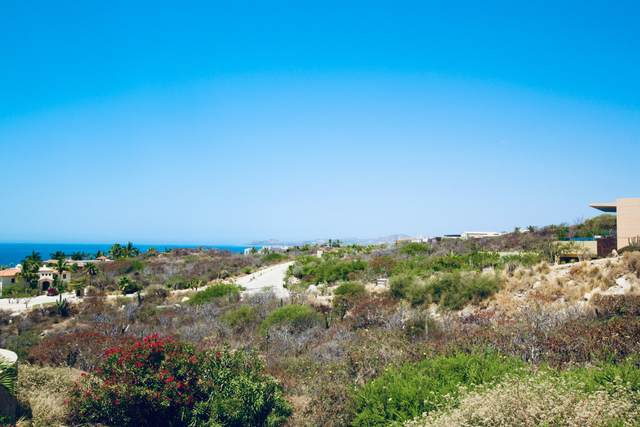 Av. Padre Kino, San Jose del Cabo, BS  (MLS #20-1417) :: Own In Cabo Real Estate