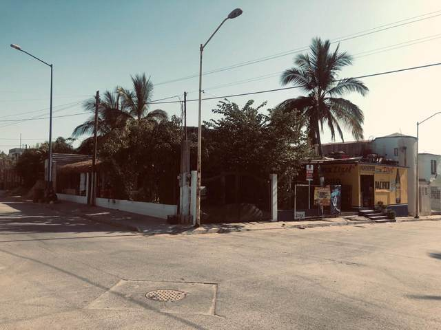 Casa Zacatal, San Jose del Cabo, BS  (MLS #20-1672) :: Ronival