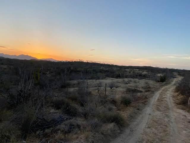Rancho La Laguna Lot I9, East Cape, BS  (MLS #20-1727) :: Ronival