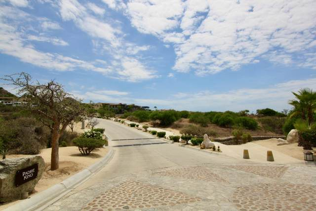 Av. Padre Kino, San Jose del Cabo, BS  (MLS #20-1737) :: Own In Cabo Real Estate