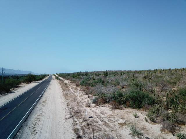 S/N Carretera La Paz- La Ventana, La Paz, BS  (MLS #20-1927) :: Own In Cabo Real Estate