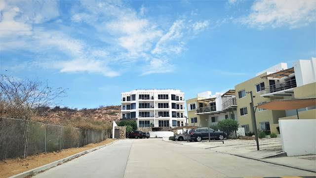 Fraccion 2 1-A, San Jose Corridor, BS  (MLS #20-1982) :: Own In Cabo Real Estate