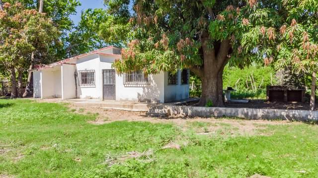 s/n Calle De Las Animas, San Jose del Cabo, BS  (MLS #20-2265) :: Own In Cabo Real Estate
