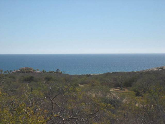 Coast Road Cabo Pulmo, East Cape, BS  (MLS #20-2418) :: Ronival