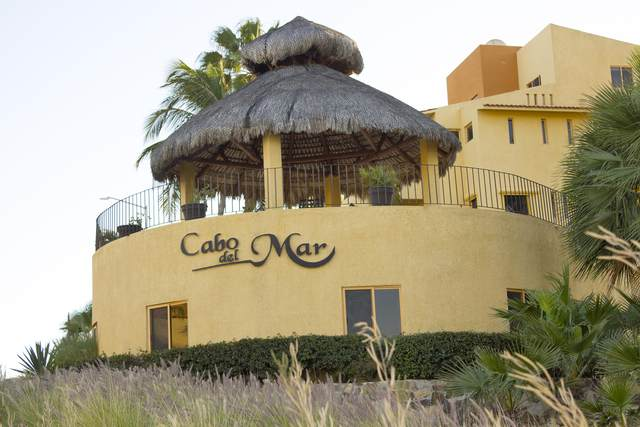 1550 Paseo Finisterra #403, San Jose del Cabo, BS  (MLS #20-2448) :: Coldwell Banker Riveras