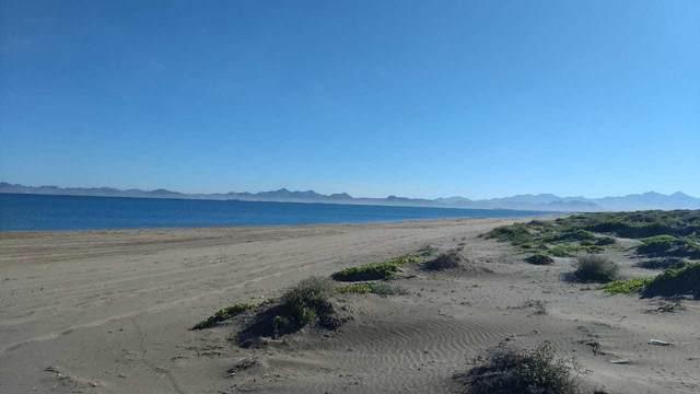 Lote 39 Hwy La Paz-Sn.Juan De La Costa, La Paz, BS  (MLS #20-2991) :: Own In Cabo Real Estate