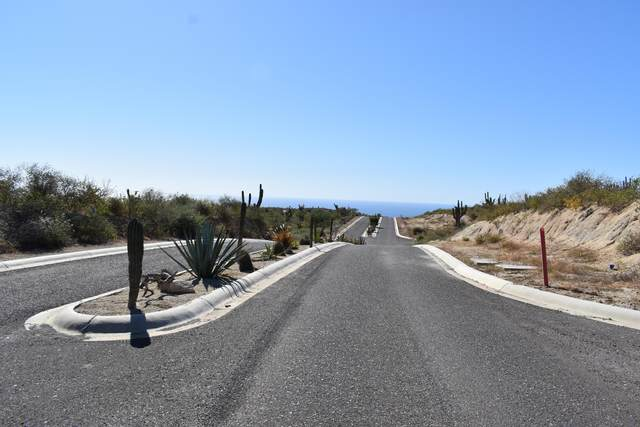 1 Manzana ''E'' Colinas Del Cabo, Cabo San Lucas, BS  (MLS #20-3161) :: Own In Cabo Real Estate
