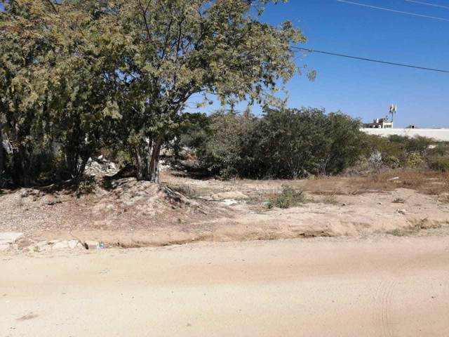 Lote ITES, San Jose del Cabo, BS  (MLS #20-3307) :: Own In Cabo Real Estate
