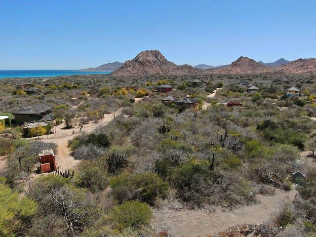 Phase 2 - Cabo Pulmo, East Cape, BS  (MLS #20-3460) :: Ronival