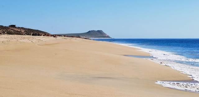 17 Via Las Playas, San Jose del Cabo, BS  (MLS #20-859) :: Los Cabos Agent