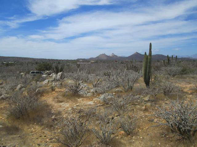 LOTE 2B Manz Xix 2B, East Cape, BS  (MLS #21-1586) :: Own In Cabo Real Estate