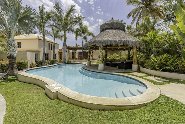 Lot 2 Remante, San Jose del Cabo, MX  (MLS #21-1946) :: Own In Cabo Real Estate