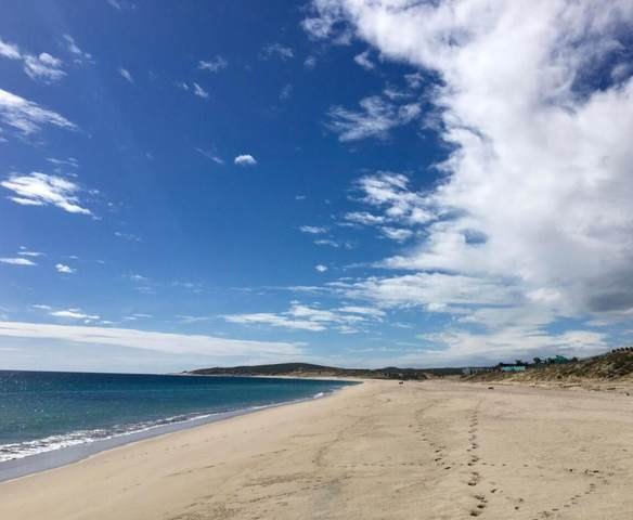 VIII East Cape Beach Road, East Cape, MX  (MLS #21-2227) :: Own In Cabo Real Estate