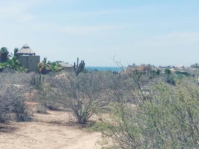 Los Zacatitos, East Cape, MX  (MLS #21-2249) :: Own In Cabo Real Estate