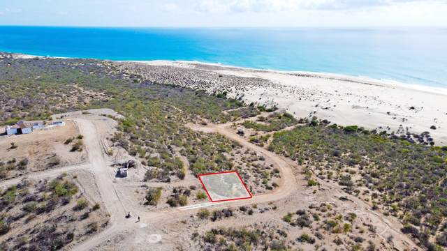 Lot 9 Sn, East Cape, MX  (MLS #21-2759) :: Own In Cabo Real Estate