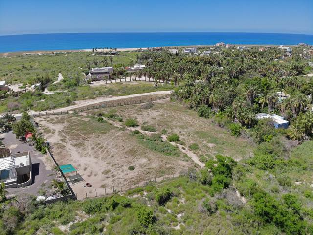 Las Liebres, Pacific, MX  (MLS #21-2990) :: Own In Cabo Real Estate