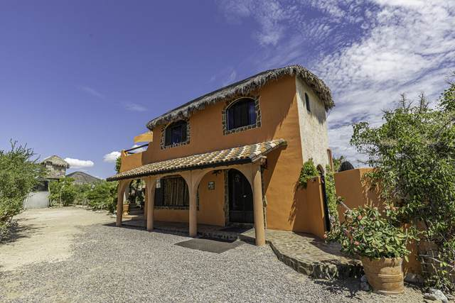 Las Playitas, Pacific, MX  (MLS #21-3270) :: Own In Cabo Real Estate