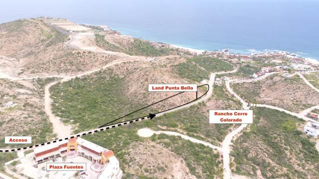 Palmilla Sur, San Jose Corridor, MX  (MLS #21-3329) :: Own In Cabo Real Estate