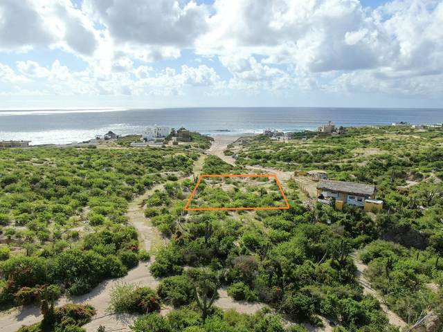 Rancho Tortugas Manzana 13, East Cape, MX  (MLS #21-3395) :: Own In Cabo Real Estate