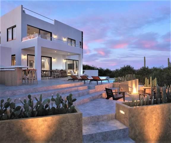 Corredor Isla Cerralvo, La Paz, MX  (MLS #21-3406) :: Own In Cabo Real Estate