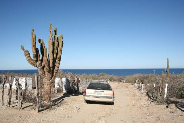 Las Tinas Large Beachfront, East Cape, BS  (MLS #21-42) :: Own In Cabo Real Estate