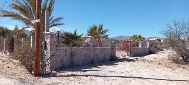 Calle Pajarito Rojo, La Paz, BS  (MLS #21-725) :: Own In Cabo Real Estate