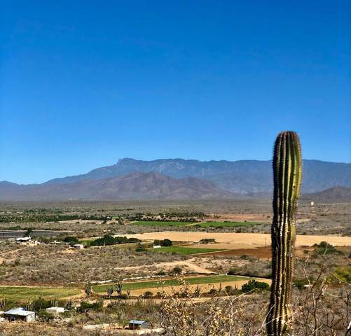Lote 3041, Pacific, BS  (MLS #21-94) :: Coldwell Banker Riveras