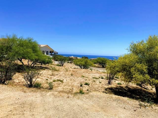 Cabo Del Sol, Cabo Corridor, BS  (MLS #15-2479) :: Coldwell Banker Riveras
