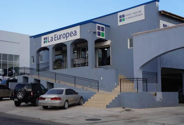 Europea Lot, San Jose del Cabo, BS  (MLS #16-1824) :: Ronival