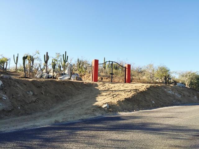 Diamante Road Access, Cabo San Lucas, BS  (MLS #16-925) :: Ronival