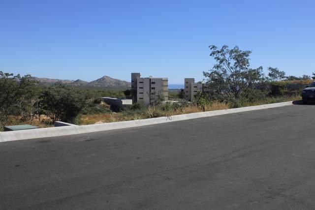 Santa Barbara, Altos Del Tule., San Jose Corridor, BS  (MLS #17-1628) :: Ronival