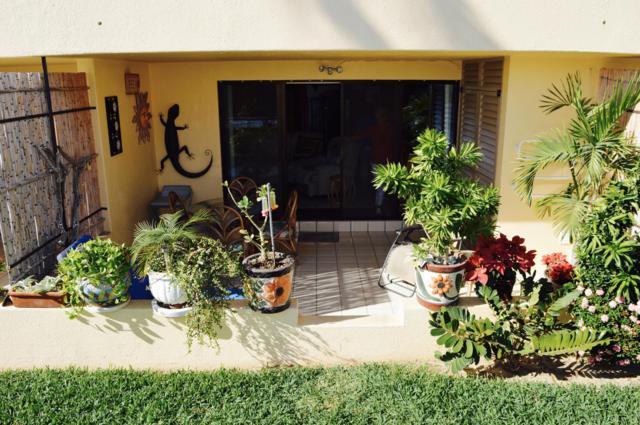 Ret.Punta Palmillas #102, San Jose del Cabo, BS  (MLS #18-304) :: Own In Cabo Real Estate