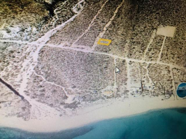 Lot 5 Carret. Los Barriles-El Cardon, East Cape, BS  (MLS #19-1386) :: Own In Cabo Real Estate