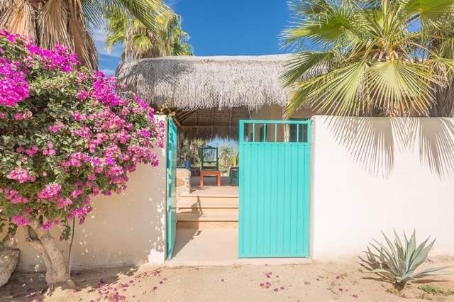 Casa Buenaventura Todos Santos, Pacific, BS  (MLS #19-3136) :: Coldwell Banker Riveras