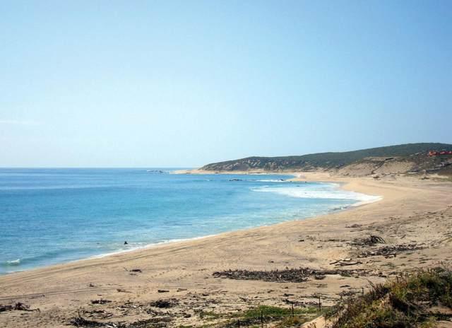Lot 1 Domicilio Conocido, East Cape, BS  (MLS #19-3620) :: Own In Cabo Real Estate